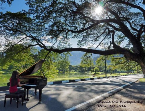 Taiping Lake Garden Photoshoot hosted by The Crafting Music